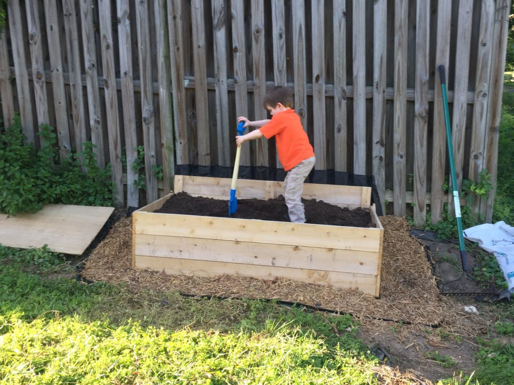 Photo: Boy digging in the dirt in a raised bed.