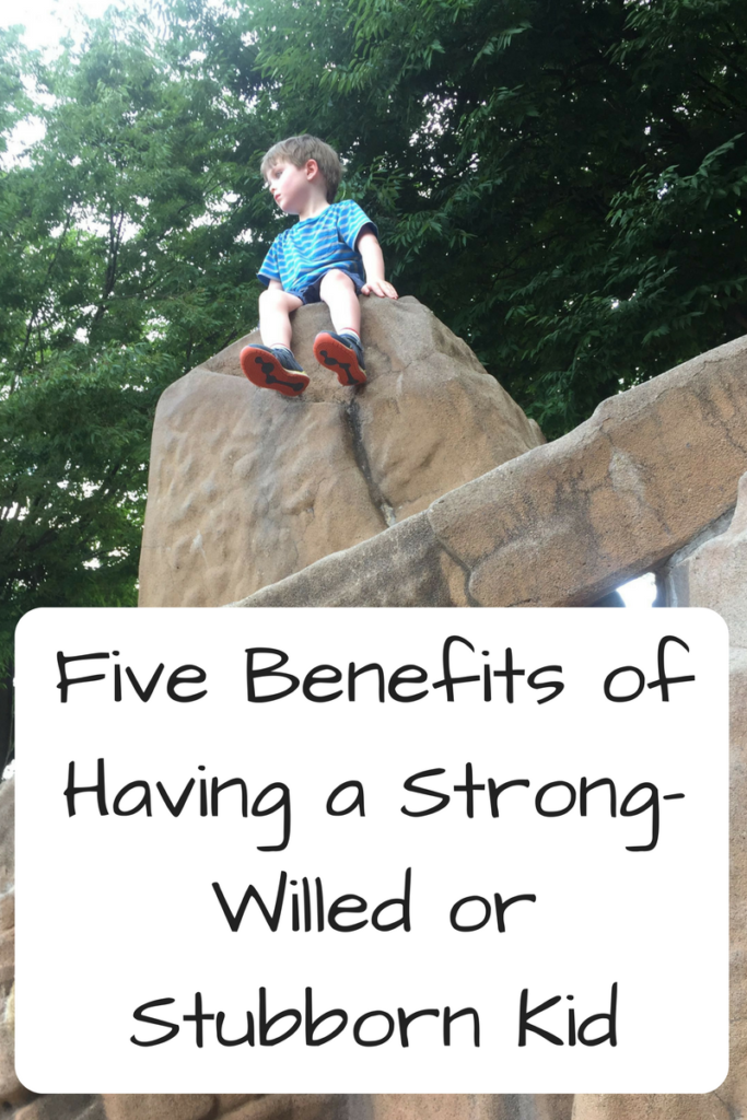 Five Benefits of Having a Strong-Willed or Stubborn Kid. Have a stubborn kid who won't do what you want? Here's some benefits you may not have considered! (Photo: Four-year-old white boy sitting on top of a rock structure.)