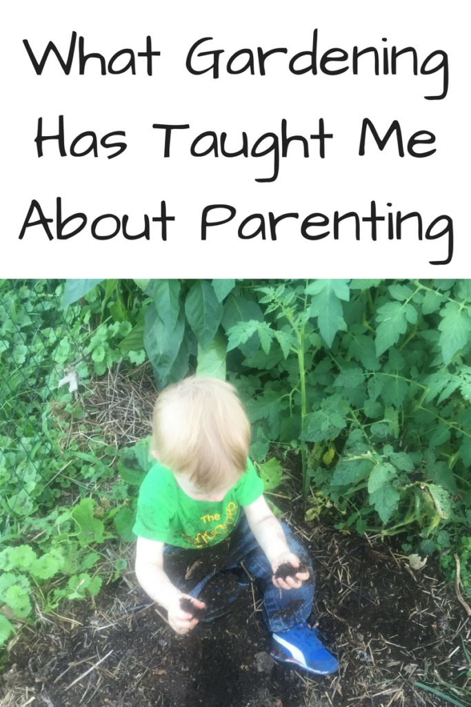 What Gardening Has Taught Me About Parenting. Kids and seeds are more alike than you may realize! (Photo: Young boy playing in the dirt with tomato plants behind him.)