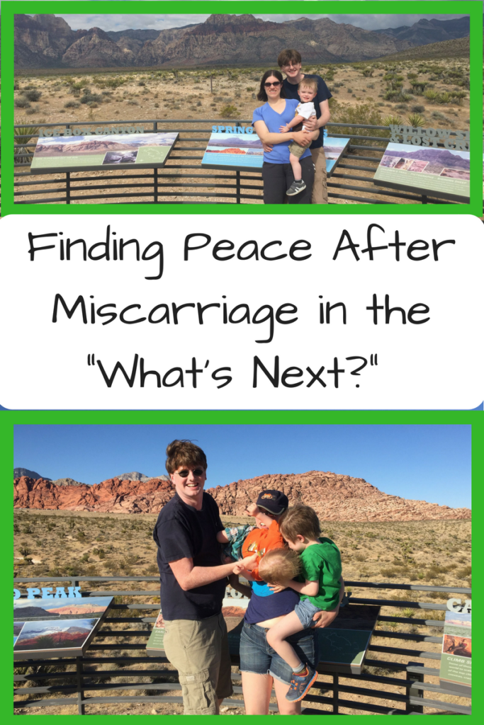 "Finding Peace After Miscarriage in the ""What's Next?"" Photo: White family of man, woman and one baby standing in front of red cliffs (top); White family of man, woman, and two kids blocking the woman standing in front of red cliffs (bottom)"